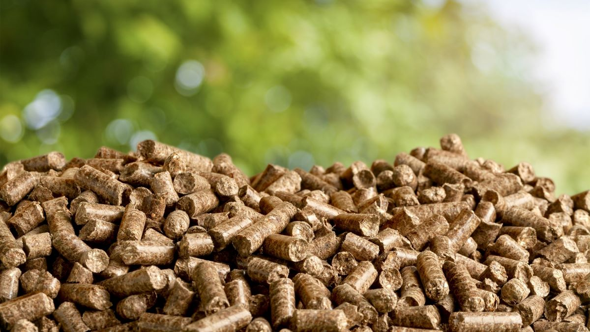 How important is Biomass?